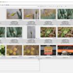 Utiliser un visualiseur d'image.